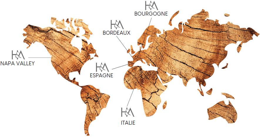 H&A dans le monde
